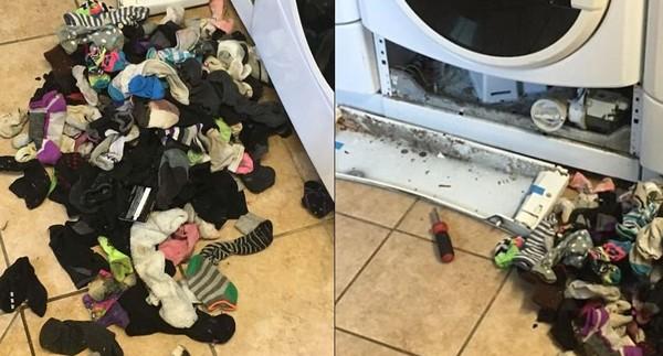▲▼洗衣機吃襪子是真的!她拆開驚見「襪子山」傻眼…網全嚇傻。(圖/翻攝推特)