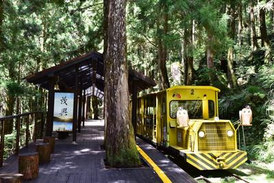 12歲以下兒童4天連假免費玩森林遊樂區