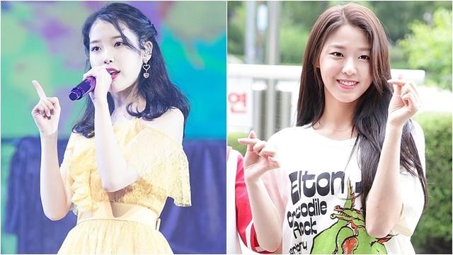 ▲▼南韓女藝人IU、雪炫(圖/翻攝自維基百科)