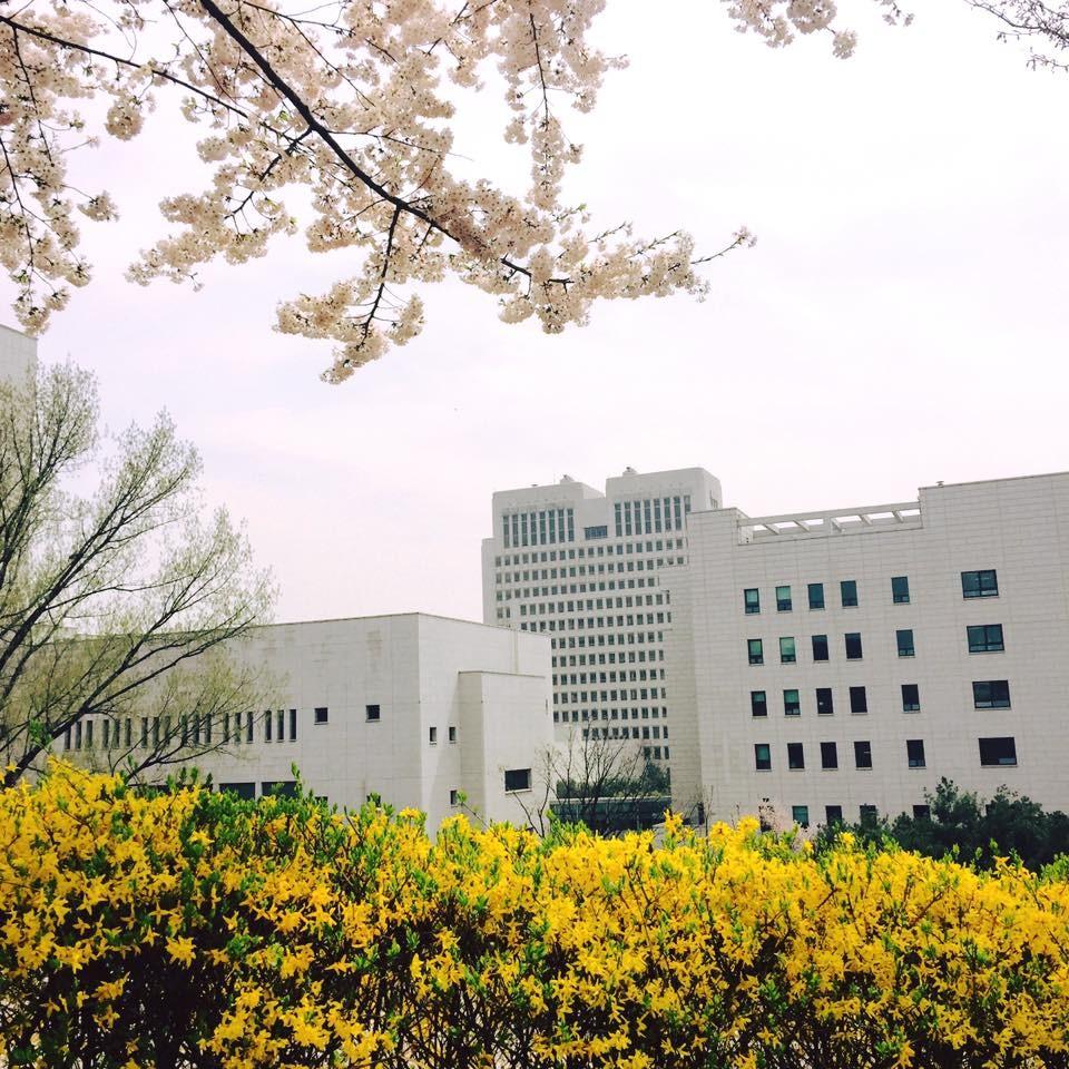 ▲▼南韓大法院(圖/取自大韓民國大法院臉書粉專)