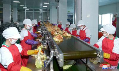 民眾吃不起泡菜!金正恩建工廠只賣出5成