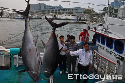 若經鑑定 蘇澳漁船將是釣到2019「第一黑鮪」