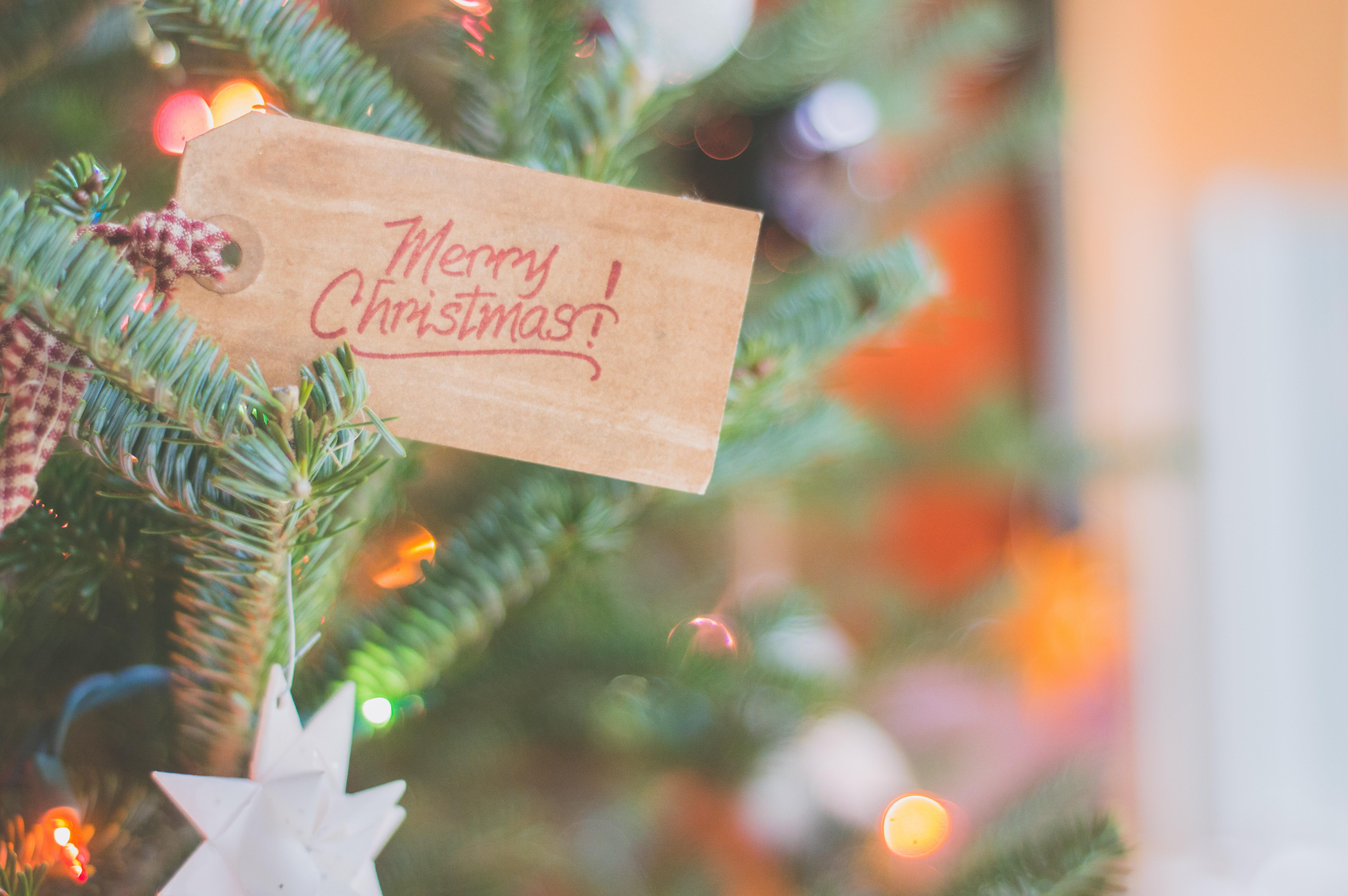 ▲聖誕卡片,聖誕樹,聖誕節,耶誕節。(圖/取自免費圖庫Pexels)