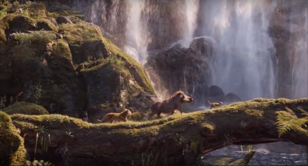 ▲▼迪士尼真人版電影《獅子王》劇照。(圖/翻攝自Youtube/迪士尼影業)