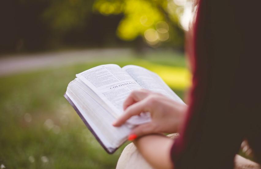 ▲閱讀、近視 。(圖/取自pixabay)