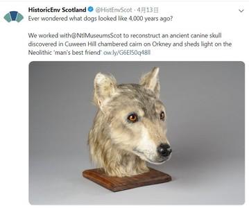 3D列印還原「4500年前的狗長相」
