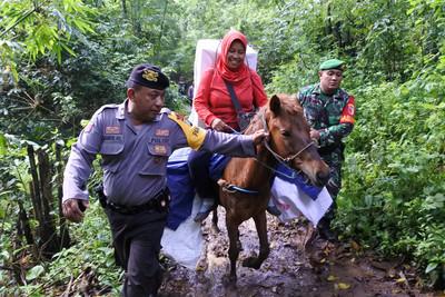 印尼大選出動馬匹、大象、飛機送票箱