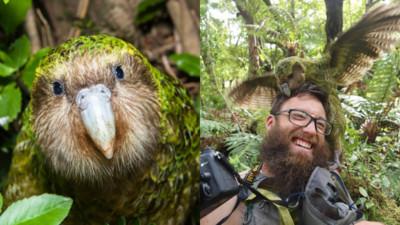 鸚鵡快絕種還強X動物學家!「鳥片」興奮臉爆紅竟然救了全族