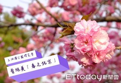 《特派趴趴GO》 北京櫻花季