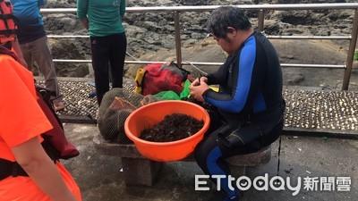 保育區違規抓龍蝦海膽 潛客最高罰15萬