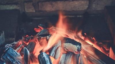 史上最貴的烤肉 2男大生燒掉千頃森林 罰9億這輩子還不完