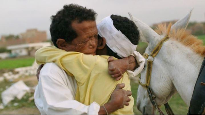 ▲痲瘋病友與孤兒,橫跨埃及萬里尋親!茱莉安摩爾、水原希子都大讚太感人。(圖/海鵬影業提供)