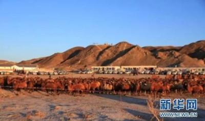 甘肅高耗能行業能源消費降1.2%