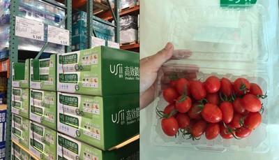 小番茄冰21天沒壞 保鮮袋1個6元