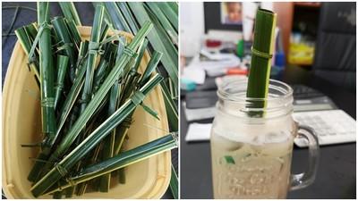 環保吸管再進化!菲律賓推100%純天然「葉子吸管」 兩分鐘就能救地球