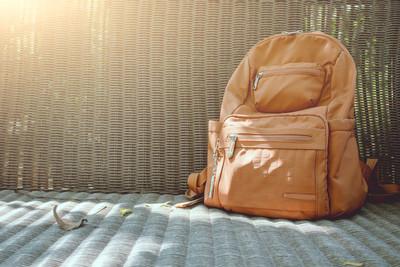 小學生「書包爬百蟲」與蟑螂生活