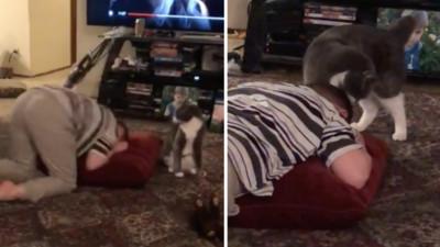男孩情緒崩潰趴地 貓咪走過去舔頭安撫 母親驚:牠比人還有辦法