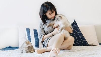 【生肖週運勢】5/13-19 勤奮鼠開財路、單身羊兒綻桃花