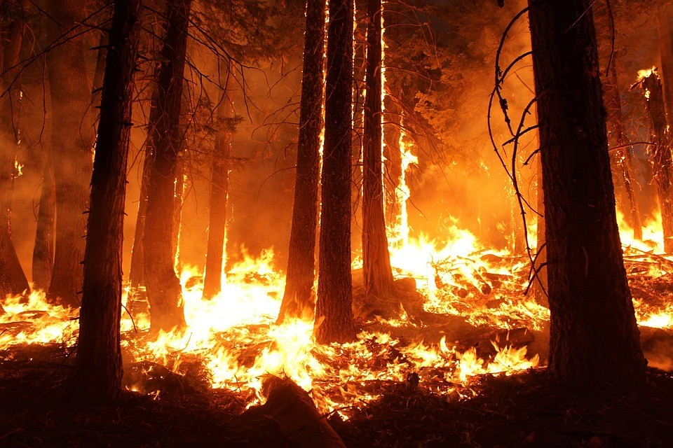 ▲▼火災。(示意圖/取自免費圖庫Pixabay)