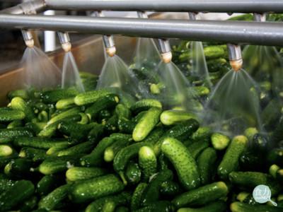食品廠愛用「漂白水洗蔬果」恐致癌?
