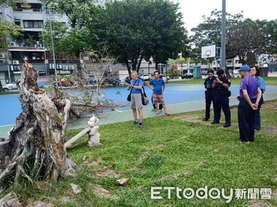 台南公園榕樹倒塌 2高中生被砸傷