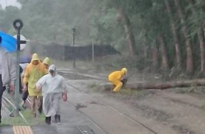 暴雨沖倒路樹!台鐵集集=水里中斷