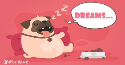 吐槽「你作夢」英文怎說? 9個與夢有關的用法