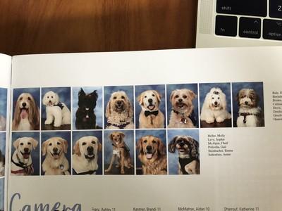 14隻狗醫生陪伴師生 同列紀念冊