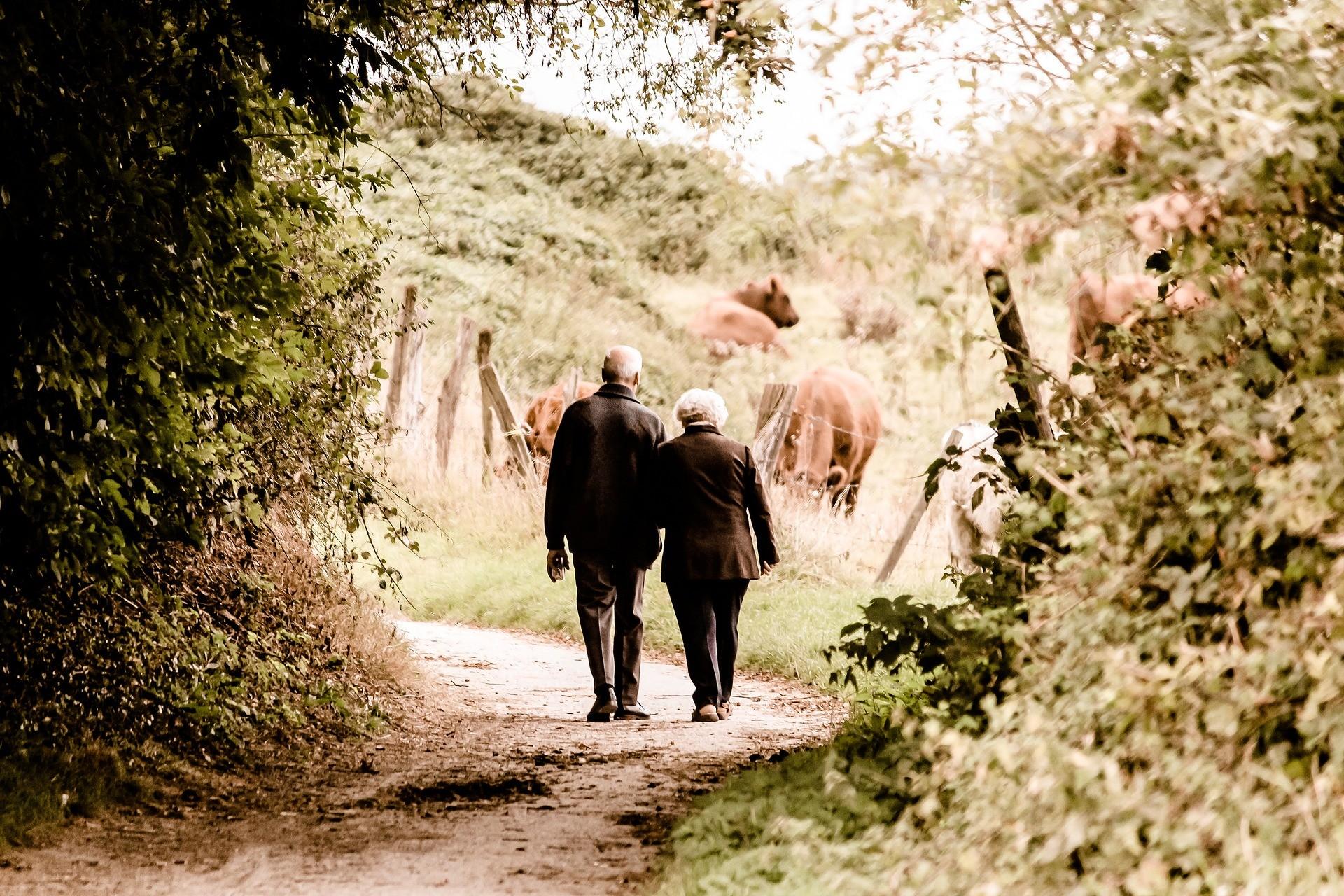 ▲▼退休 。(示意圖/取自免費圖庫Pixabay)