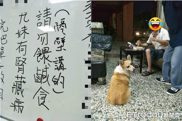 車行公告欄寫上「請勿餵狗」 沒人敢違反...背後原因超暖!