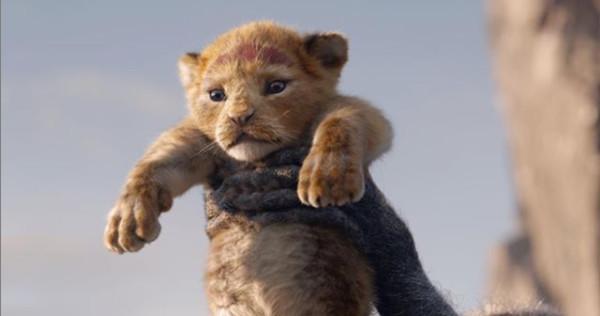 ▲真人版《獅子王》也即將暑假7月份上映。(圖/翻攝自迪士尼IG/@disney)