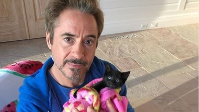 鋼鐵人私下是愛貓不只三千次