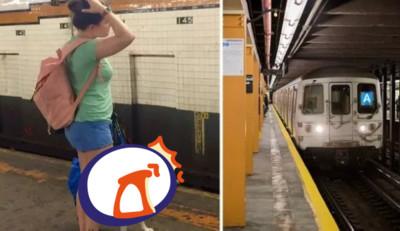 地鐵規定狗要裝袋 IKEA神袋一秒通關
