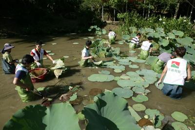 仲介加入環境復育 打造宜蘭生態「濕」樂園