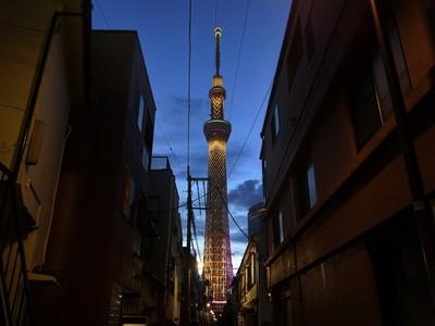 嫌惡設施變身最強鐵塔 晴空塔前身日本首座水泥廠 江戶時期飄梅香