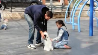 家長平常要教!網紅示範「要不要看狗狗」 一句就拐小孩傻傻跟著走
