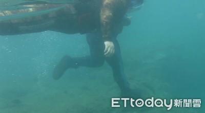 重踩海龜畫面曝光!潛水客被送辦