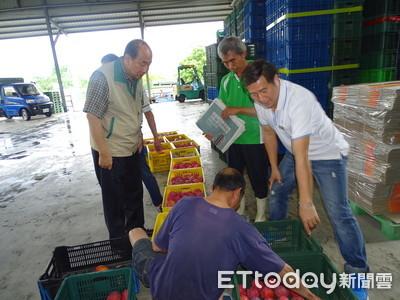 李朝塘冒雨視察芒果產銷 果農反應今年收成不錯