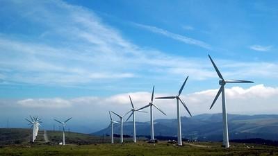 重視永續發展!綠色能源將是「未來趨勢」 廢水養殖藻類可生產燃料