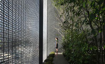 城市光學玻璃屋 打造出靜謐森林