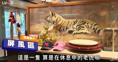 郭董百坪豪宅大公開 逾百萬老虎雙面繡、120吋大電視..小孩玩具處處可見