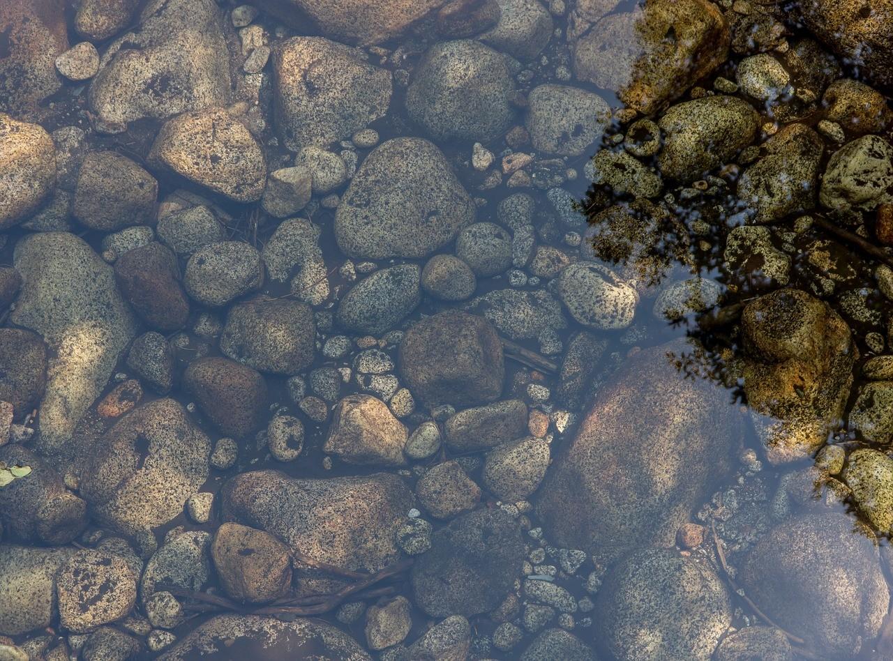 ▲▼水池,池塘。(圖/取自Pixabay)