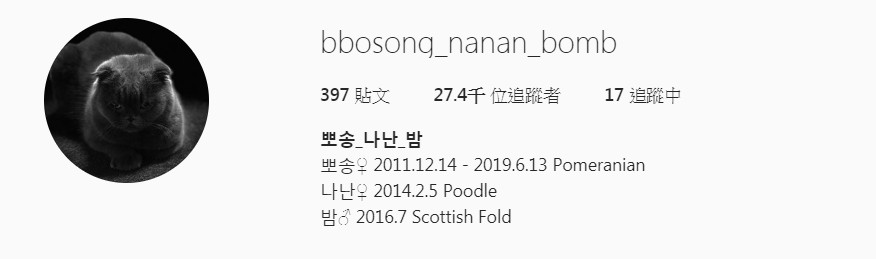 ▲▼定延一家人替毛小孩們創立的IG傳遞Bbosong過世的消息。(圖/翻攝自bbosong_nanan_bomb)