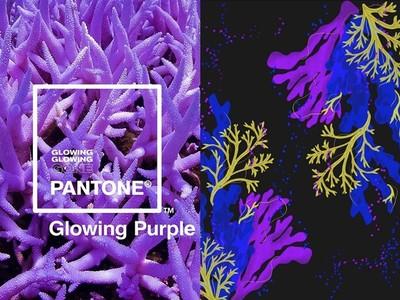 Pantone全新3種螢光珊瑚色