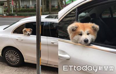 秋田靠車窗 車主無理要求爽歪他