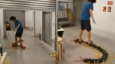 踩著2公尺蜈蚣出門!  神人自製「毒蟲王滑板」扭擺竄爬太噁爛