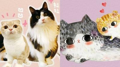 貓奴插畫家血淚控訴「貓當室友有多撒野」 苦中帶樂有多甜蜜