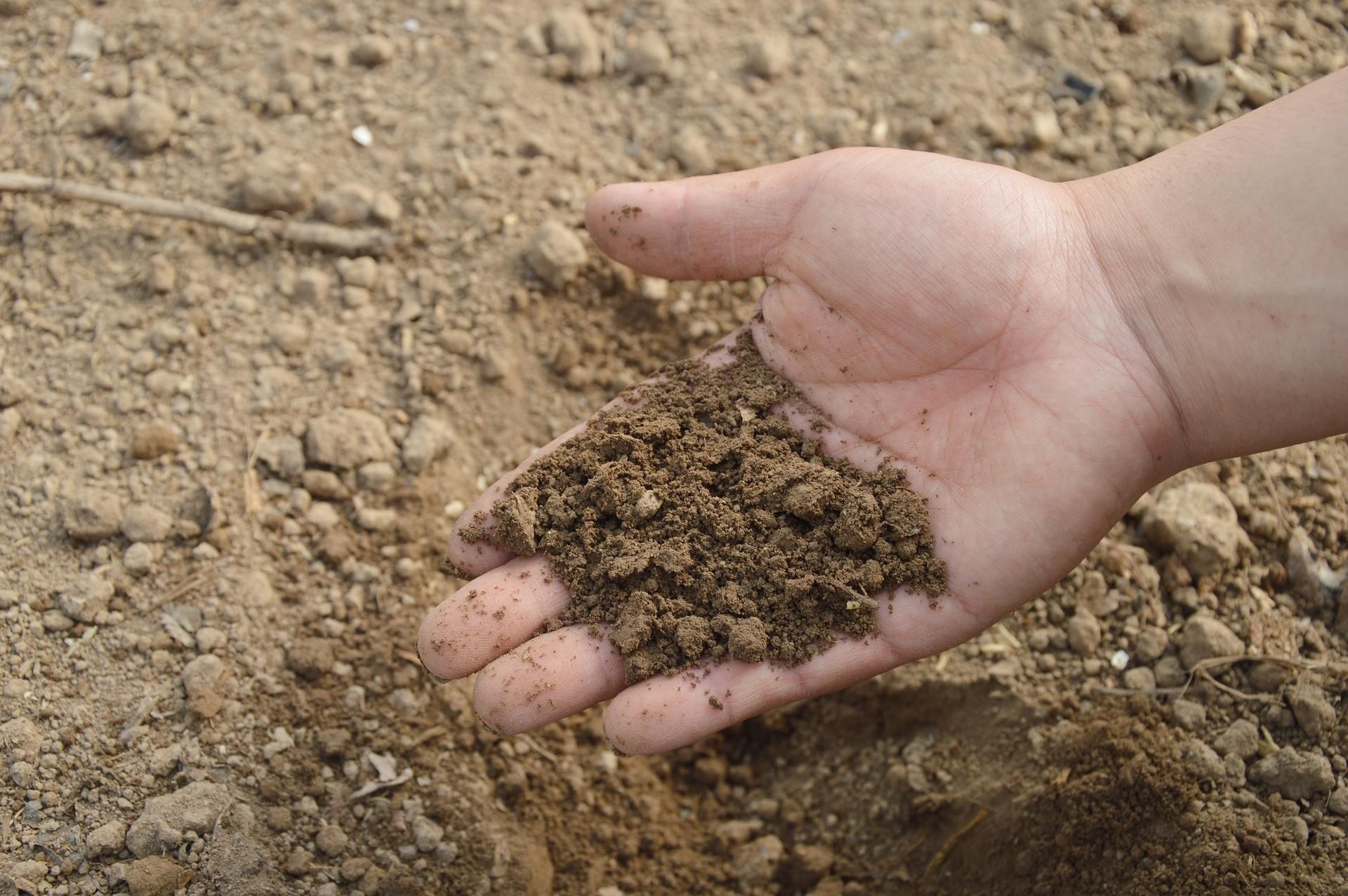 ▲土,土壤,吃土。(圖/取自免費圖庫Pixabay)