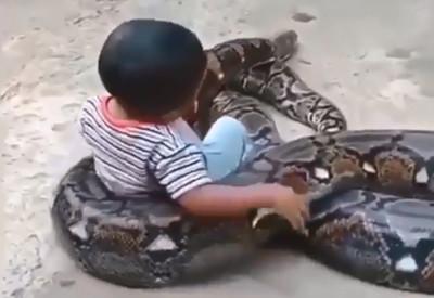 孩把蟒蛇當咖啡杯 網:牠剛吃飽