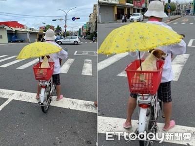 阿嬤騎車「陽傘讓給毛孩」超有愛